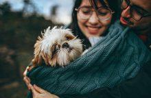 恋爱中怎样避免成为舔狗